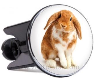 Glugg-Rabbit