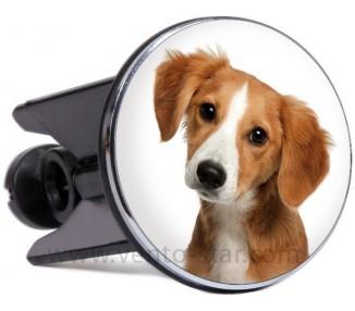 Glugg-Doggy