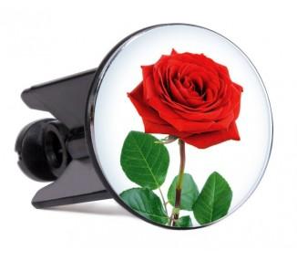 Glugg-Rose